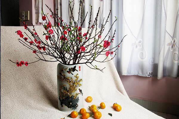 trang trí hoa đào dịp tết