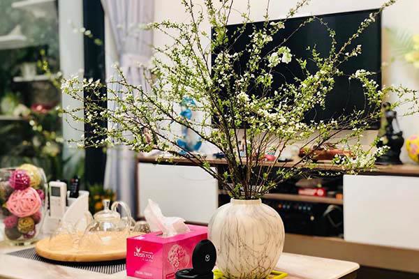 hoa trang trí tết - hoa chơi tết